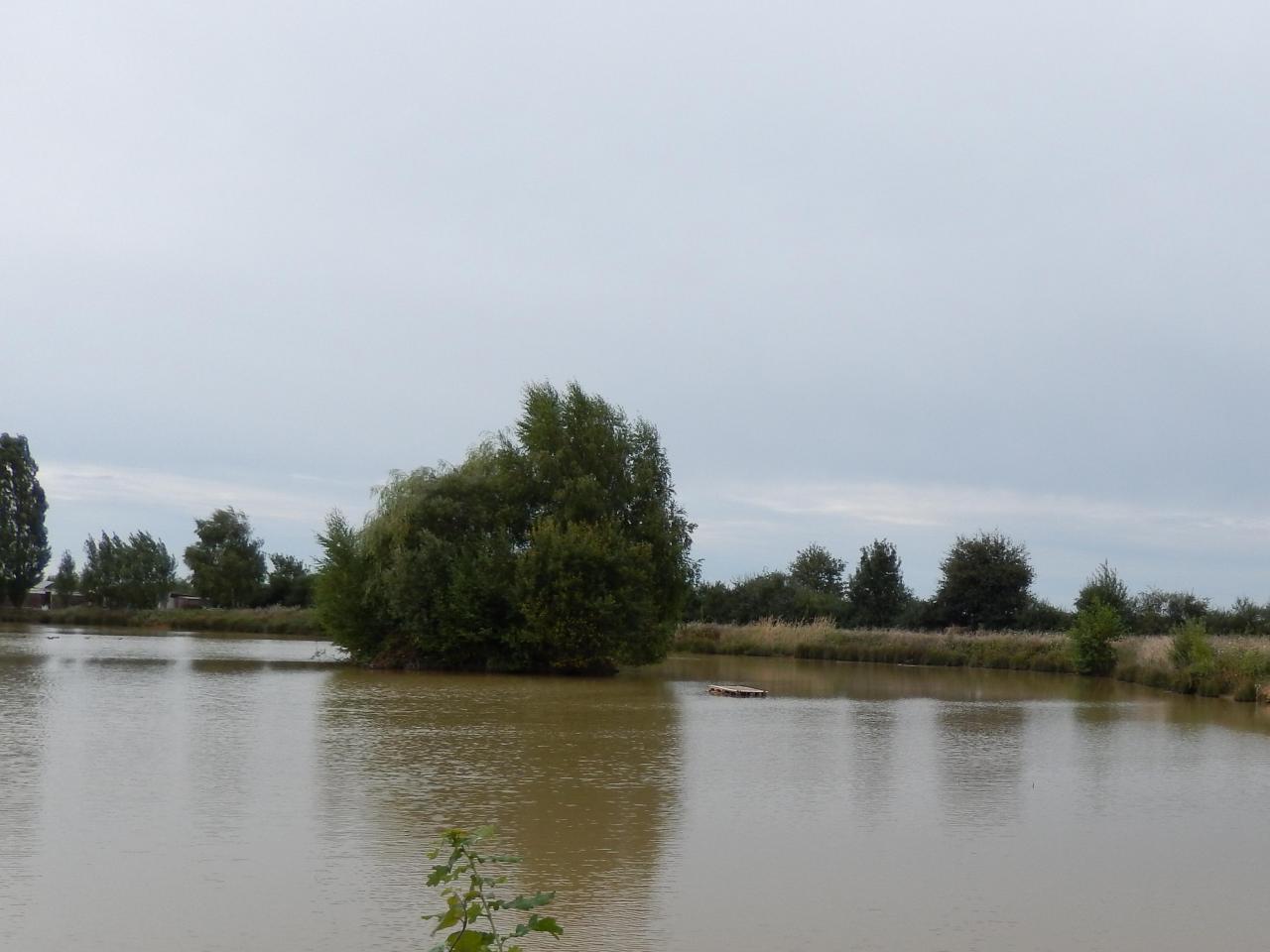 2013-08-25 GérardB50