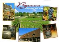 Beaune capitale des vins