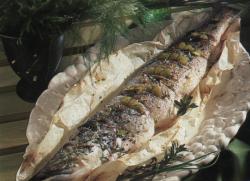 brochet-cuisine.png